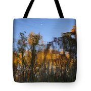 Fall Trees Reflected Tote Bag