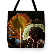 Fall Trinity Tote Bag