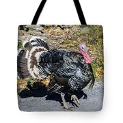 Fall Turkey Tote Bag