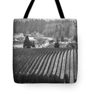 Vineyard In Black And White Tote Bag