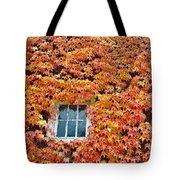 Fall Window Tote Bag