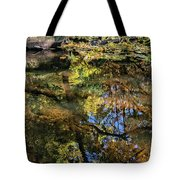 Fall Into Seasons Tote Bag