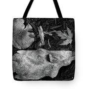 Fallen Leaves Revisited Tote Bag
