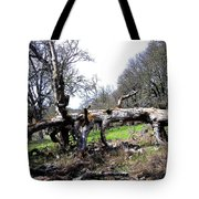 Fallen Mighty Oak Tote Bag