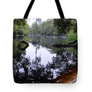 Fallen Oak Nearly Covered Tote Bag