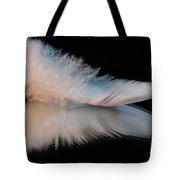 Fallen Reflections II Tote Bag