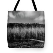 Fallen Timbers Battlefield Tote Bag