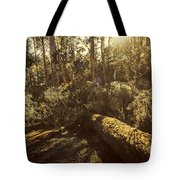 Fallen Tree In Foliage Tote Bag