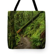 Fallen Tree On The Trail Tote Bag