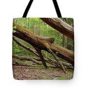 Fallen Trees Tote Bag