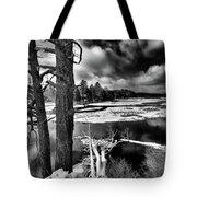 Fallen Trees In The Moose River Tote Bag