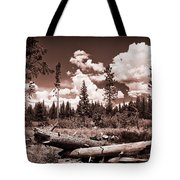Fallen Trees Tote Bag