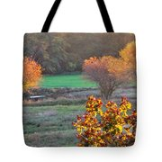 A Fall Day.  Tote Bag