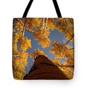 Falling Sky Tote Bag
