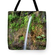 Falling Spring Tote Bag