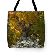 Falling Tree Tote Bag