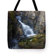 Falling Waters In February #2 Tote Bag