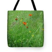 Fallow Field Tote Bag