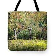 Fallow Meadow Tote Bag