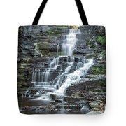 Falls Creek Gorge Trail Ithaca New York Tote Bag