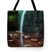 Falls In Bluff Country Tote Bag