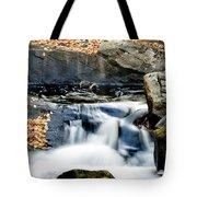 Falls In Fall Tote Bag