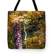 Falls Splendor Tote Bag