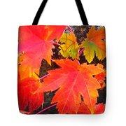 Falltime ...  Tote Bag