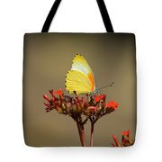False Dotted Border Butterfly Tote Bag