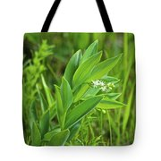 False Solomon Seal Tote Bag