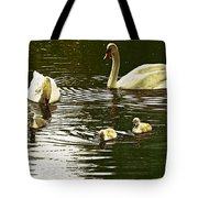 Family Day Out  Tote Bag