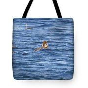 Family Geese Tote Bag