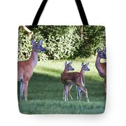 Family Of 4 Tote Bag