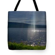 Family Of Light Tote Bag
