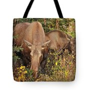 Family Picnic Tote Bag