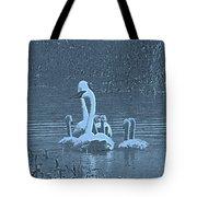 Family Swim Tote Bag