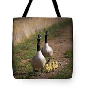 Family Time 2 Tote Bag