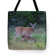 Family Visit Tote Bag