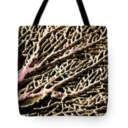 Fan Coral Tote Bag
