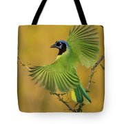 Fan Dancer Tote Bag