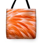Fan Of Feathers Tote Bag