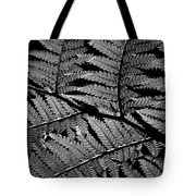 Fan Of Fronds Tote Bag