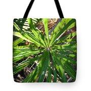 Fan Of Leaves Tote Bag