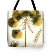 Fan Palm Tote Bag