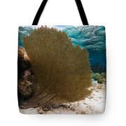 Fan-tastic Sea Web Tote Bag