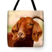 Fancy The Red Goat Tote Bag