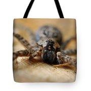 Spider Close Up Tote Bag