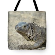 Fantastic Gray Iguana With Spines Along His Back Tote Bag