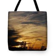 Fantastic Sunet Tote Bag