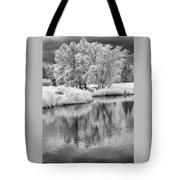 Fantasy Tree Reflection Tote Bag